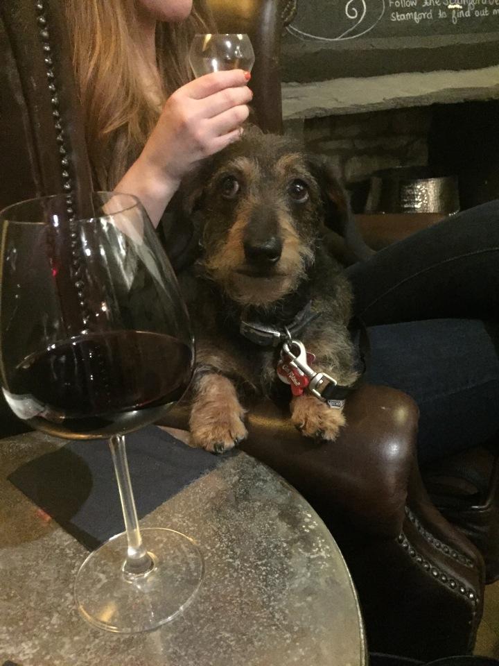 Wine Bar Wednesdays09/08/2017